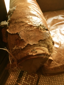 A busted horsehair sofa