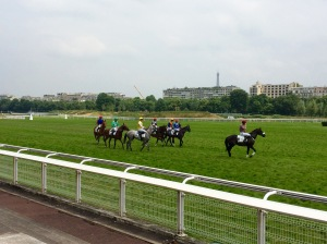 Auteuil races ... note the Tour Eiffel in the background - the view from the top of the grandstand is stunning.